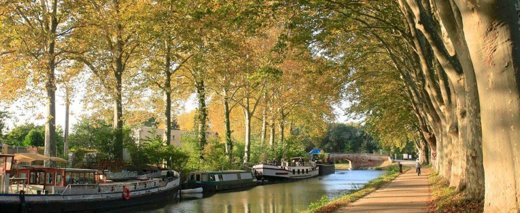 Pourquoi investir dans l'immobilier à Toulouse ?
