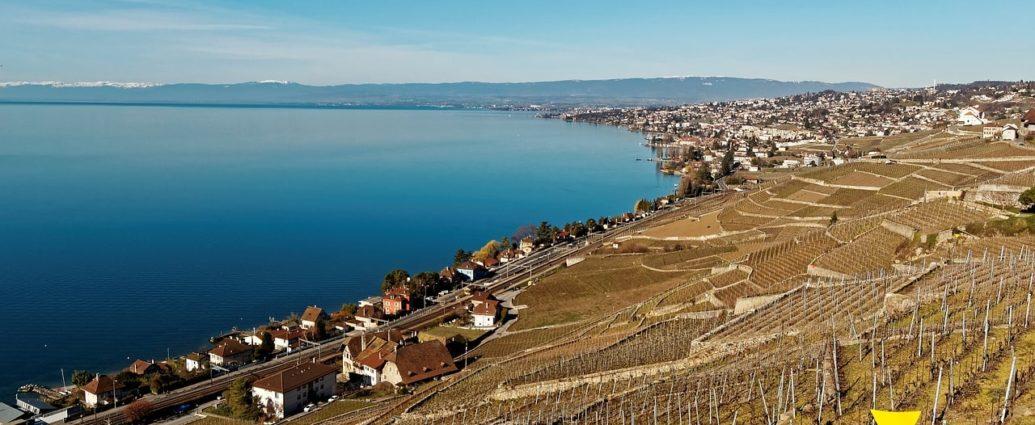 investir dans l immobilier neuf suisse