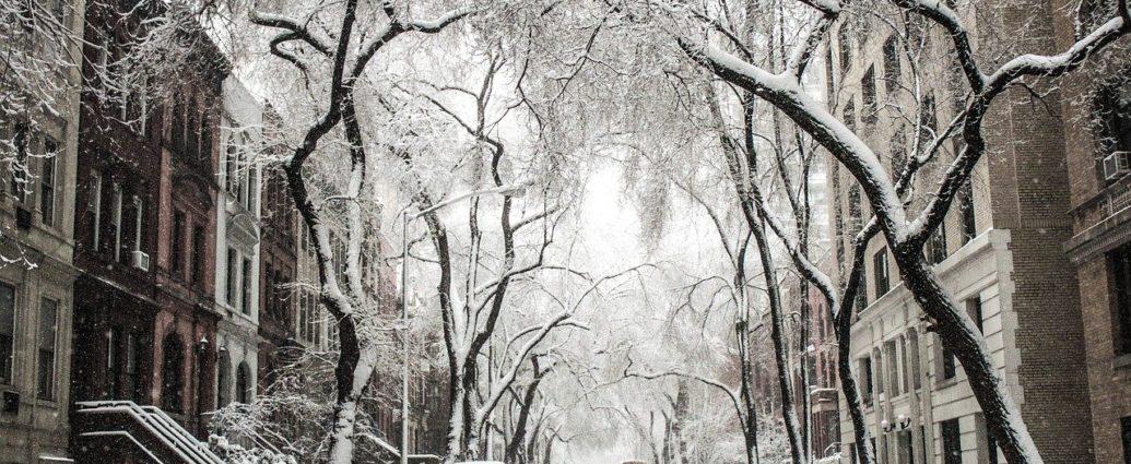 treve hivernale